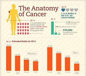 Infographic: Anatomy of Cancer